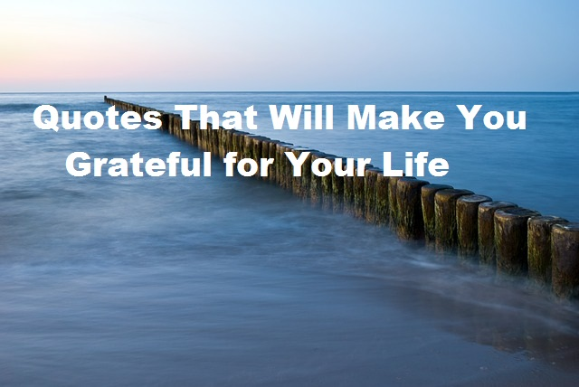 Quotes That Will Make You Grateful for Your Life