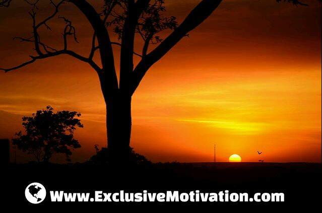 Www.Exclusive Motivation.com