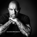 15 Motivational Joe Rogan Quotes